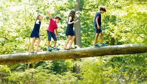 Philosophy with Children (P4C)